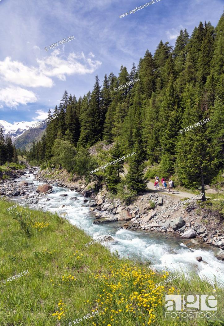 Stock Photo: Hikers walking in the Gran Paradiso National Park or Parco nazionale del Gran Paradiso, with a view up the Torrente Valnontey to mountains.