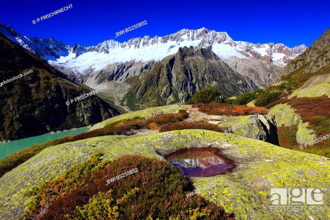 Imagen: mountain lake at Dammastock 3630 m, Switzerland, Uri, Goescheneralp.