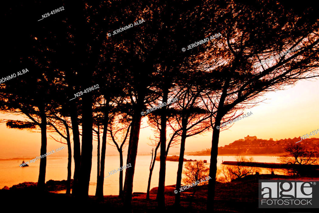 Stock Photo: Magdalena peninsula and bay in the afternoon, Santander. Cantabria, Spain.
