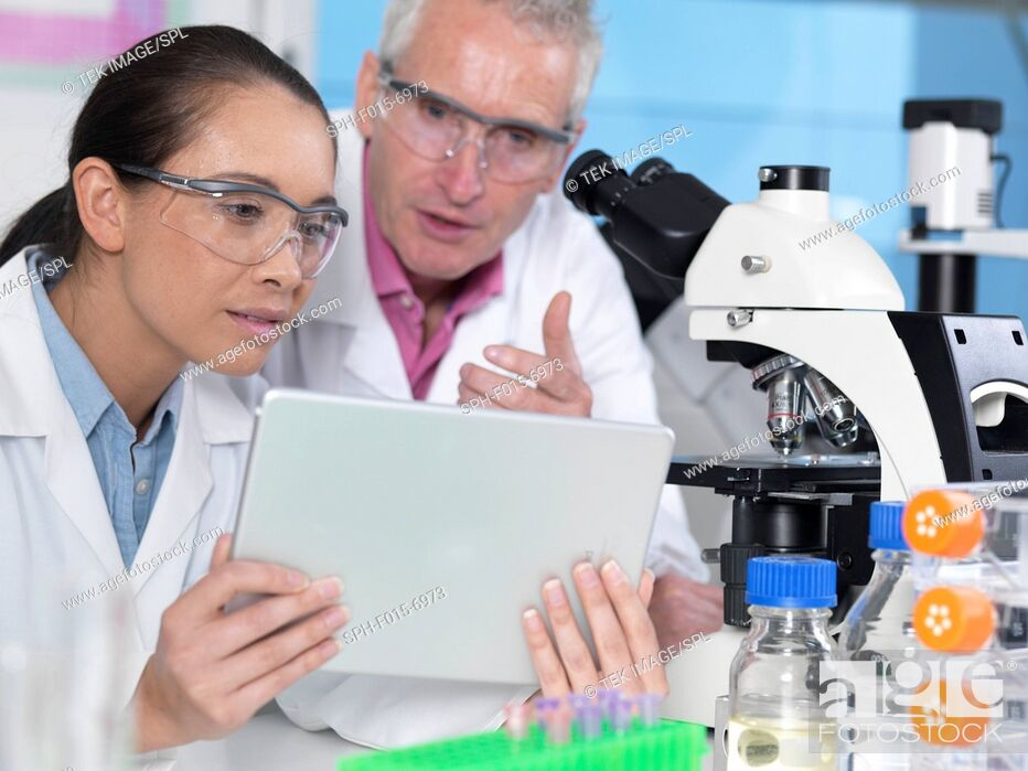 Stock Photo: MODEL RELEASED. Scientist viewing results on a digital tablet in a laboratory.