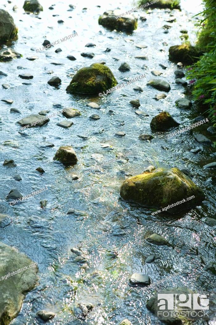 Stock Photo: Rocks scattered in stream.