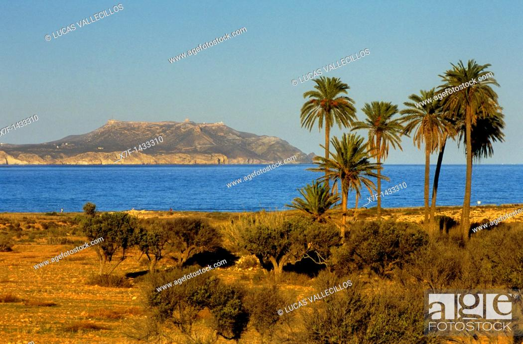 Stock Photo: `El Playazo'  In background `Mesa de Roldan' Cabo de Gata-Nijar Natural Park  Biosphere Reserve, Almeria province, Andalucia, Spain.
