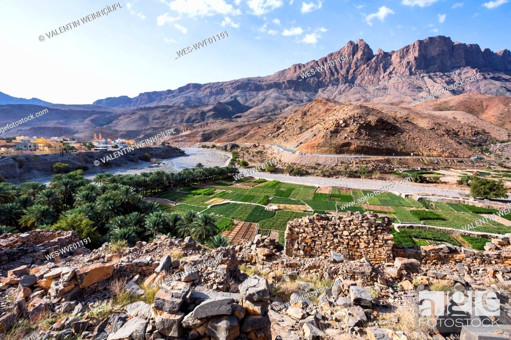 Stock Photo: Fields of Al Hamra, Ad Dakhiliyah, Oman.