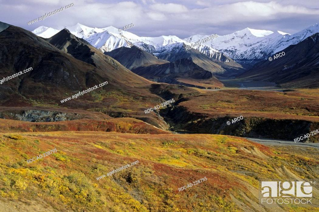 Photo de stock: Alaska range, Denali national park, Alaska, USA.