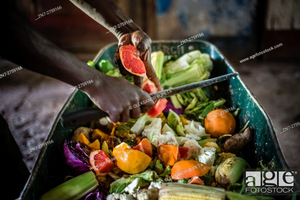 Stock Photo: A worker of the Munda Wanga environmental park prepares fruit and vegetable mix for feeding animals, Lusaka, Zambia.