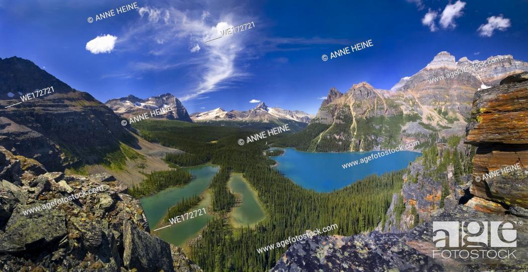 Stock Photo: Lake O`Hara (turquoise) and Mary Lake (blue) seen from above. Lake O`Hara area, Yoho National Park, British Columbia, Canada.
