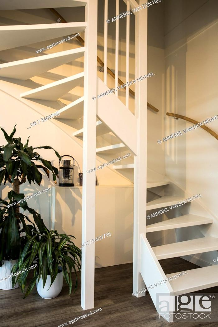 Stock Photo: white Stairs on wood and white wall with green plants modern design.