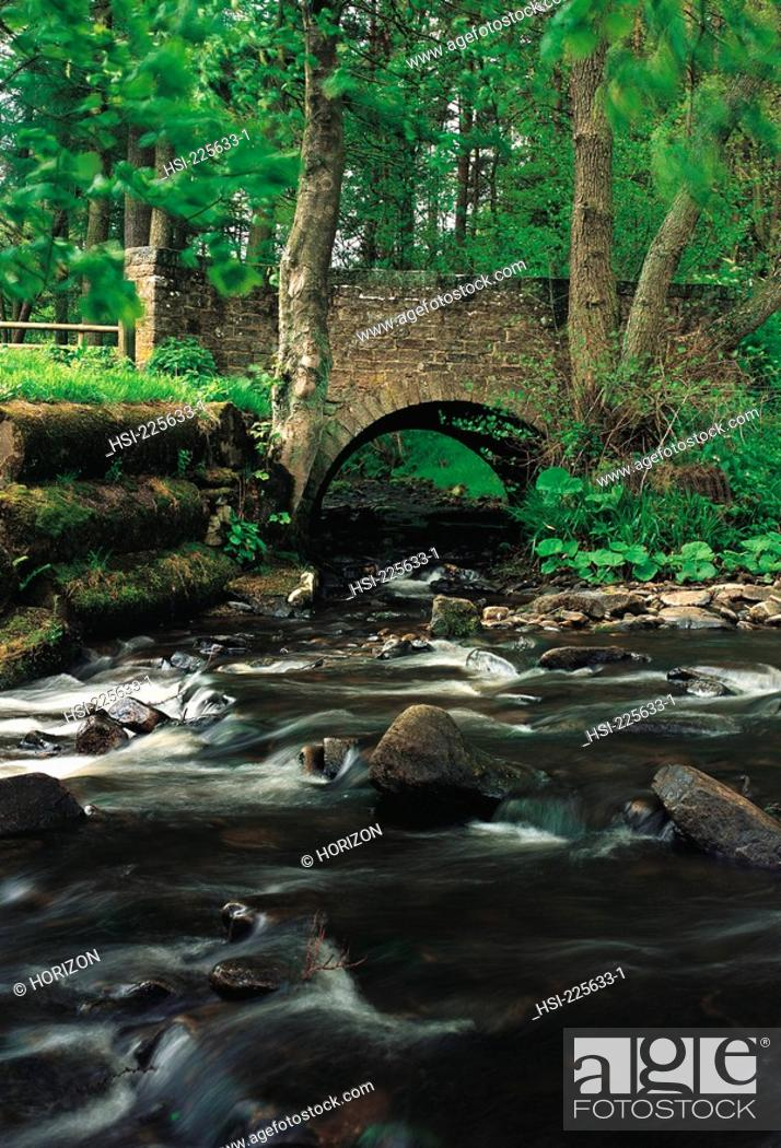 Stock Photo: United Kingdom, England, Derbyshire, Old stone bridge over River Dane, Peak District,.