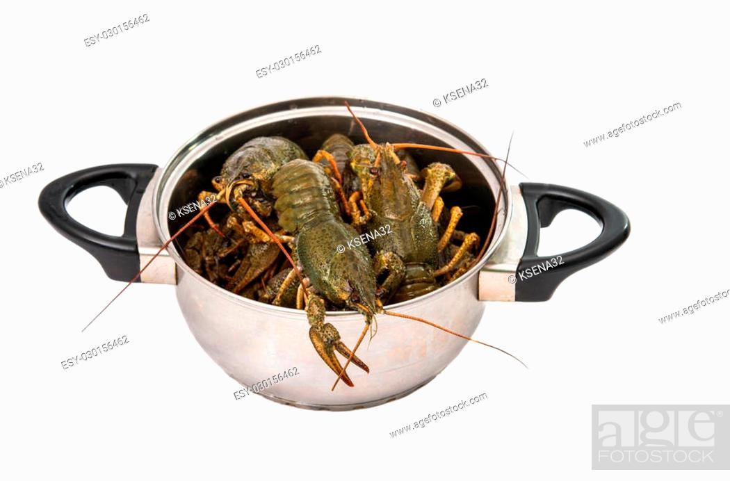 Stock Photo: crayfish in a pot isolated on white background.