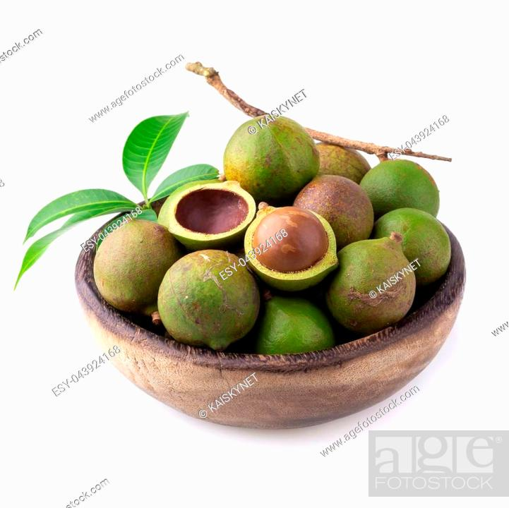 Stock Photo: Macadamia nuts isolated on a white background.
