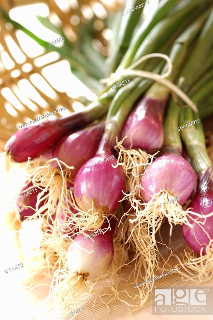 Stock Photo: fresh red onions.