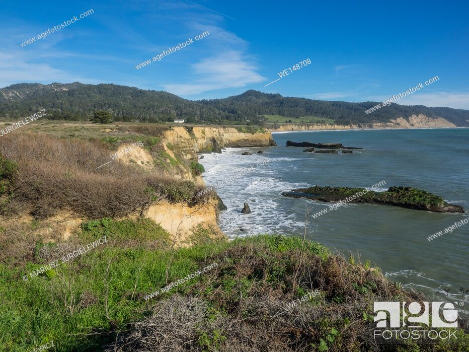 Stock Photo: Ano Nuevo State Park is a state park of California, USA, encompassing Ano Nuevo Island and Ano Nuevo Point, which are known for their pinniped rookeries.