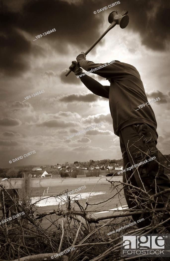 Stock Photo: Man Erecting a new wooden fence, hammering posts into ground.