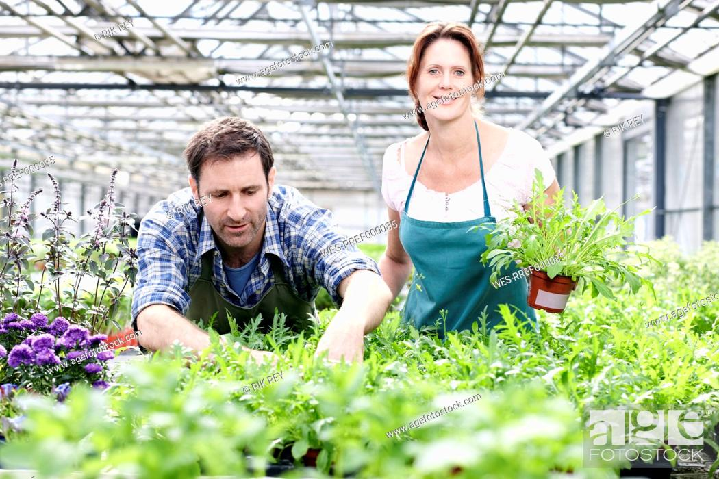 Stock Photo: Germany, Bavaria, Munich, Mature man and woman standing with rocket plant in greenhouse.