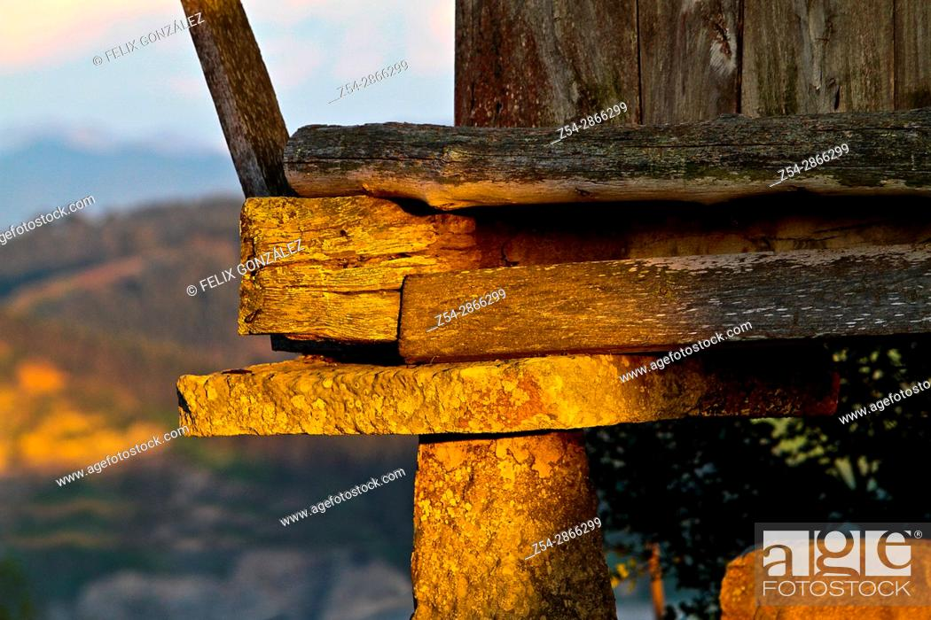 Imagen: Typical horreo, close view, Asturias, Spain.