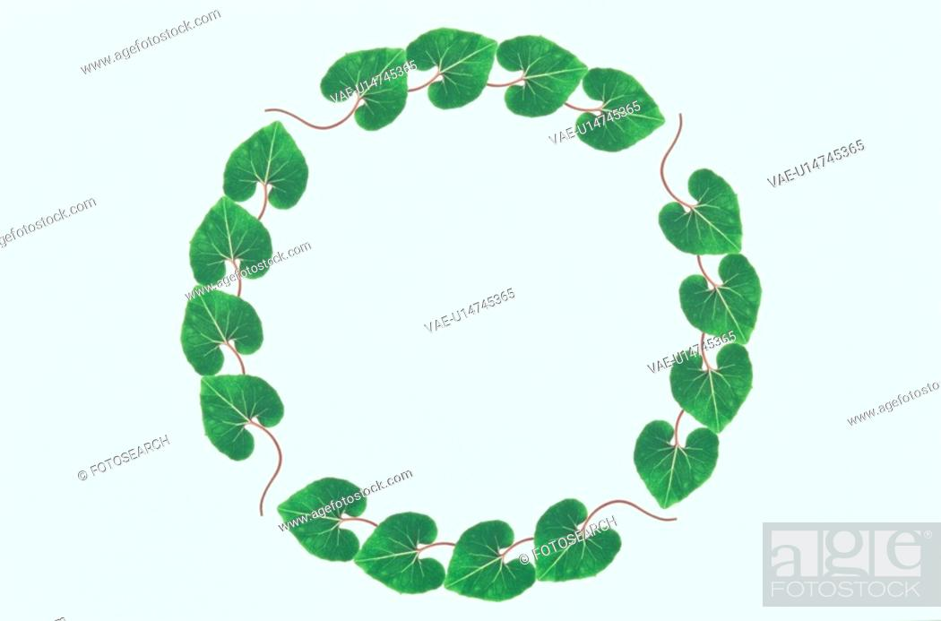 Stock Photo: The Round Frame Of Leaves.