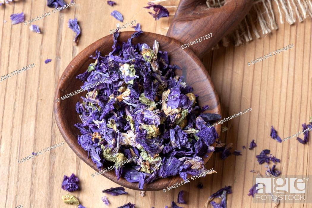 Stock Photo: Dried flowers of malva sylvestris mauritiana, a variety of mallow, on a spoon.