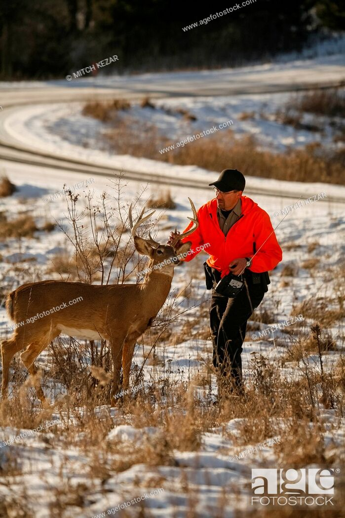 Imagen: Conservation Officer In Field With Deer Decoy.