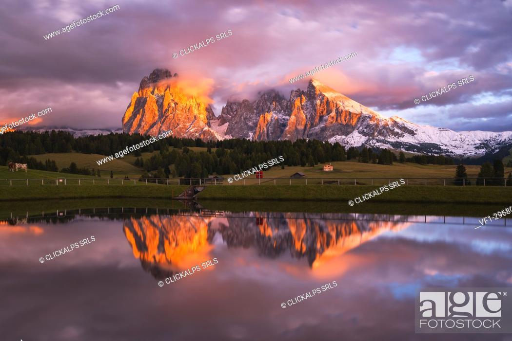 Stock Photo: Alpe di Siusi/Seiser Alm, Dolomites, Kastelruth, South Tyrol, Italy.