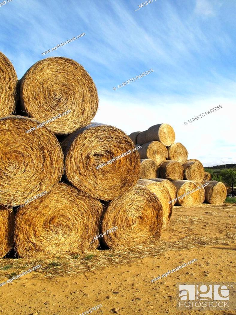 Stock Photo: Country.