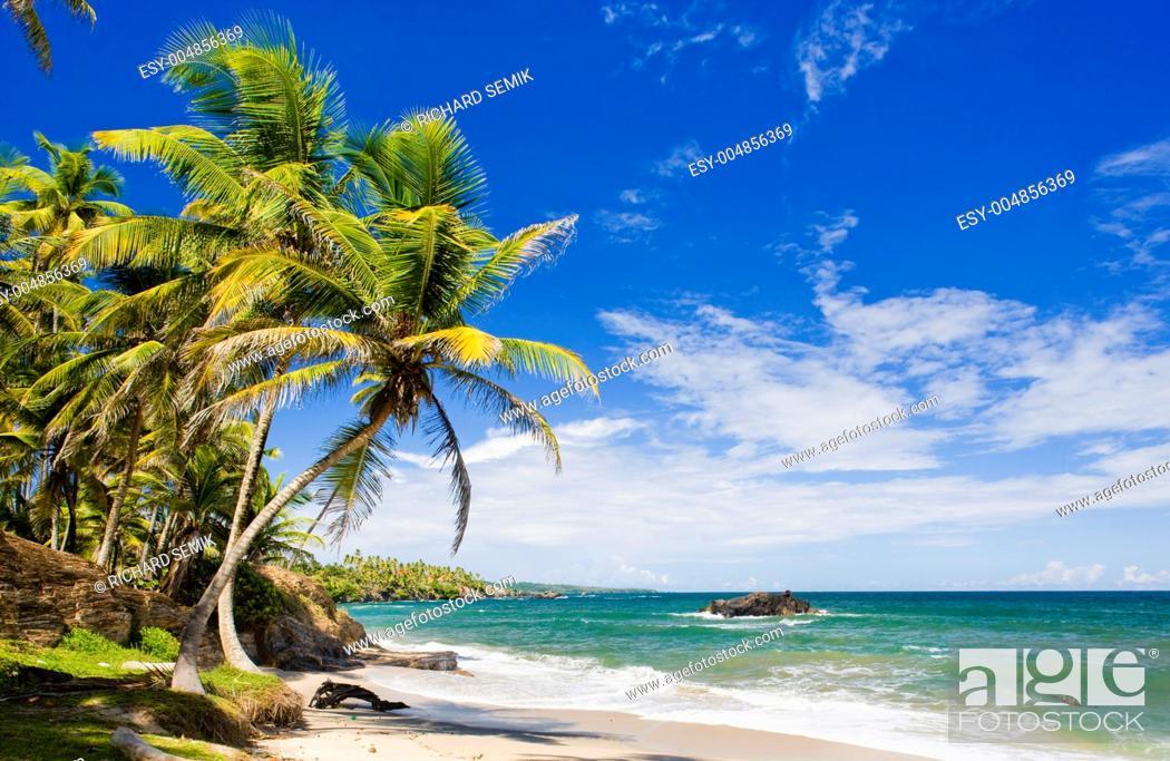 Stock Photo: Cumana Bay, Trinidad.