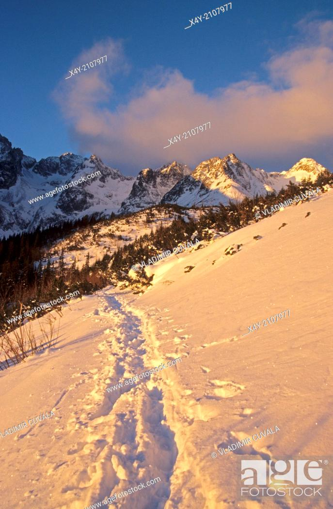"""Stock Photo: """"The scenery in the valley """"""""""""""""Dolina Zeleneho plesa"""""""""""""""", High Tatras.""""."""