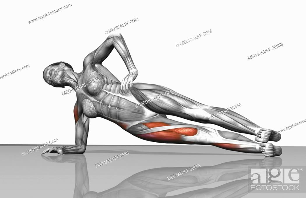 Stock Photo: Side plank exercise.