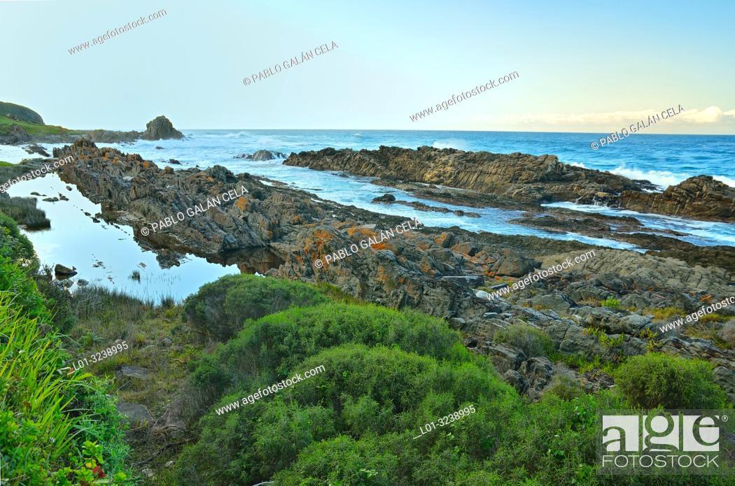 Imagen: Coast of the Tsitsikama National Park, South Africa.