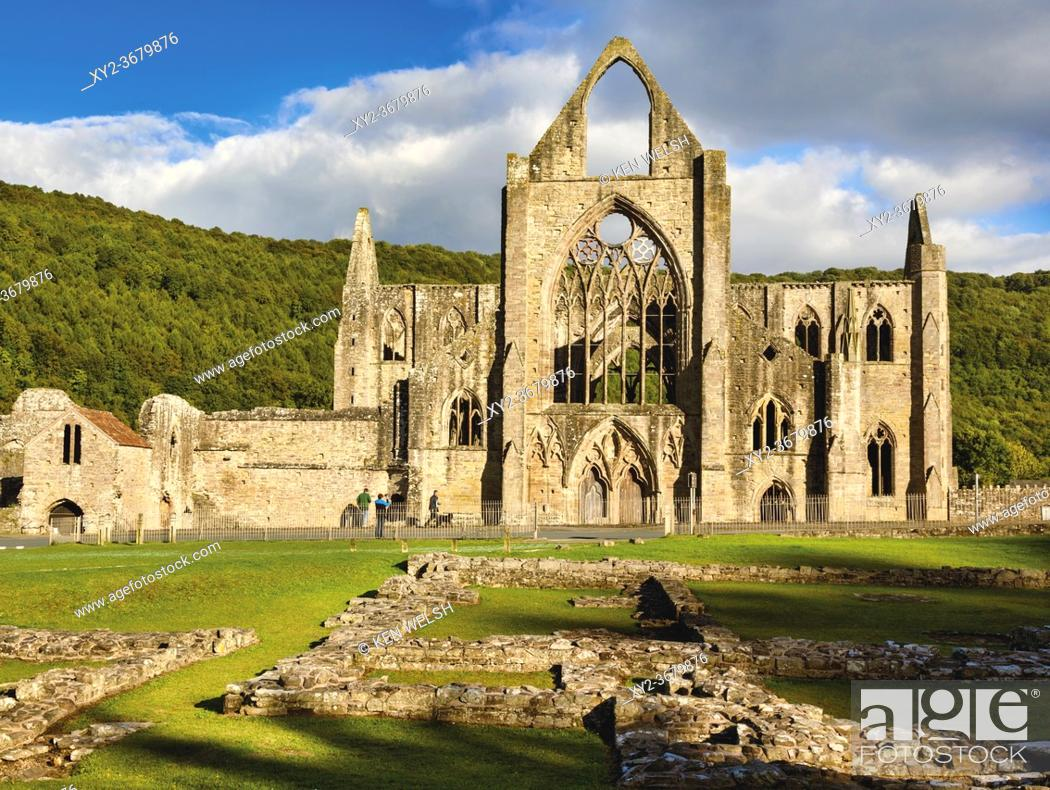 Stock Photo: Tintern Abbey, Monmouthshire, Wales, United Kingdom. The Cistercian abbey fell into ruin aftr the DIssolution of the Monasteries in the reign of King Henry VIII.