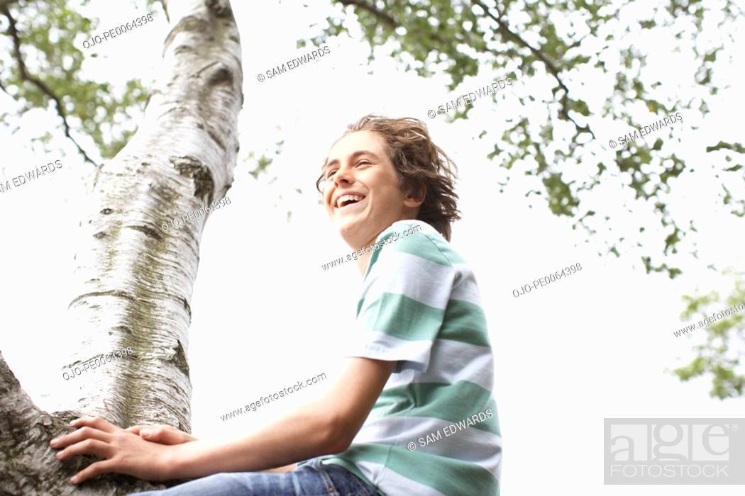 Stock Photo: Boy climbing in tree.