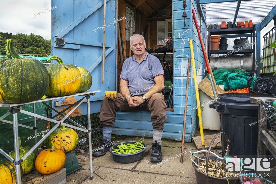 Stock Photo: Ian David Lakey, Eglinton Growers Allotments, Kilwinning, Ayrshire, Scotland, UK.