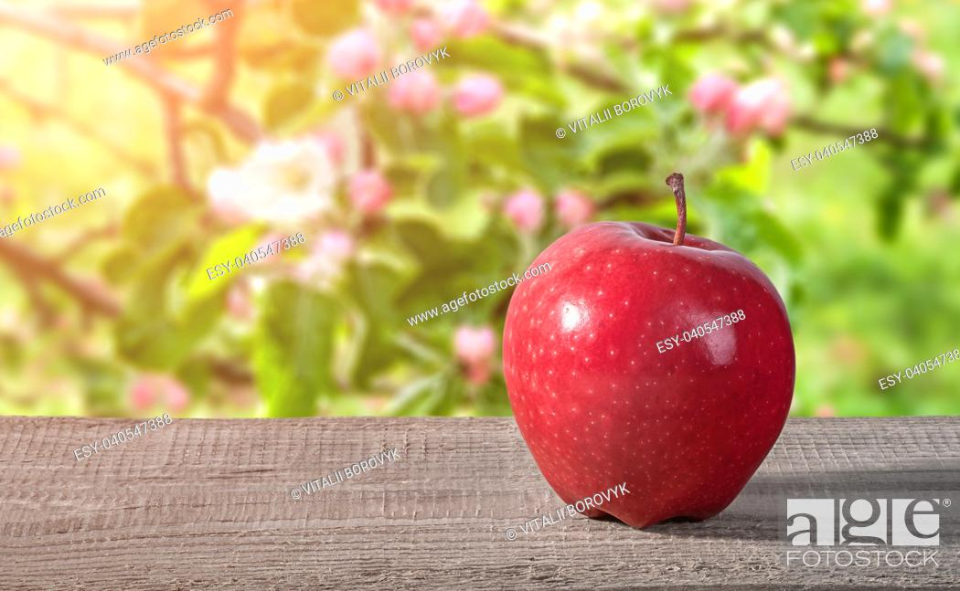 Stock Photo: Red apple on a wooden table. Blooming apple orchard on a blurry background.