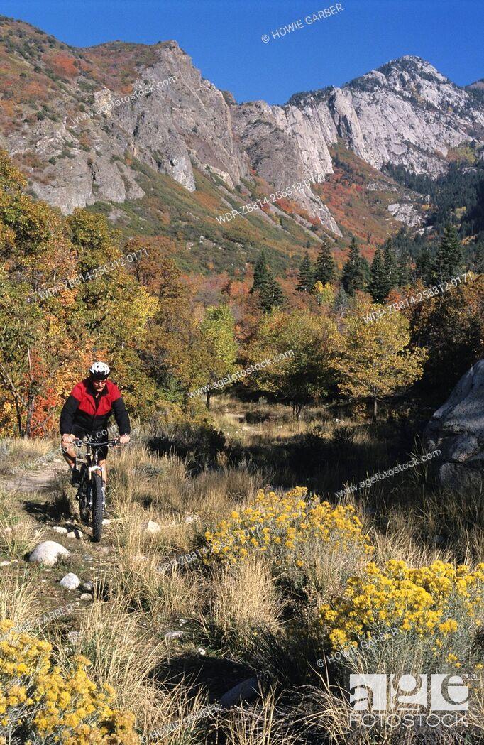 Imagen: Steve Mountain biking in Bells Canyon, Wasatch-Cache National Forest, Utah.