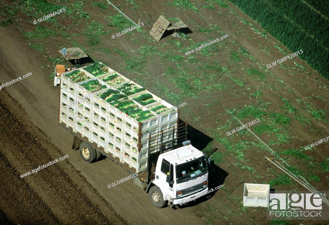 Stock Photo: Aerial, truckload of harvested onions.