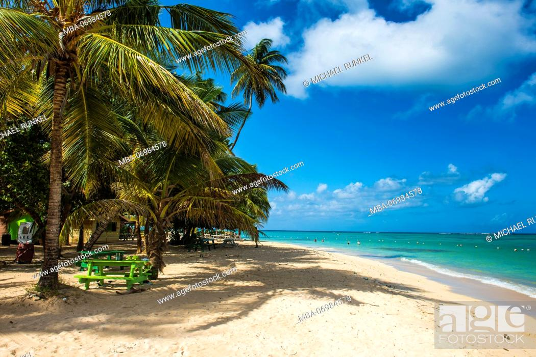Stock Photo: Sandy beach and palm trees of Pigeon Point, Tobago, Trinidad and Tobago, Caribbean.