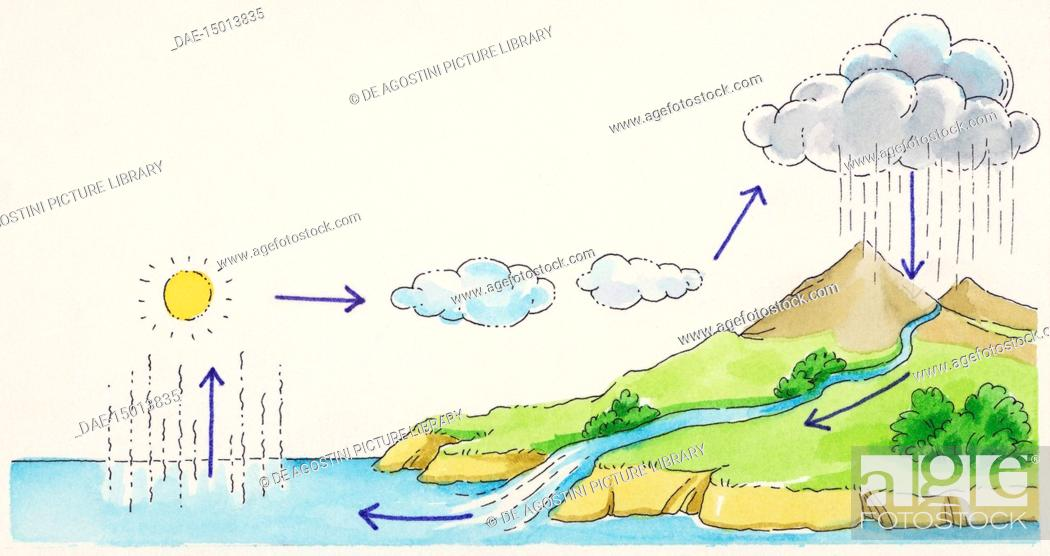 stock photo - water cycle diagram (evaporation, condensation,  precipitation, runoff), drawing