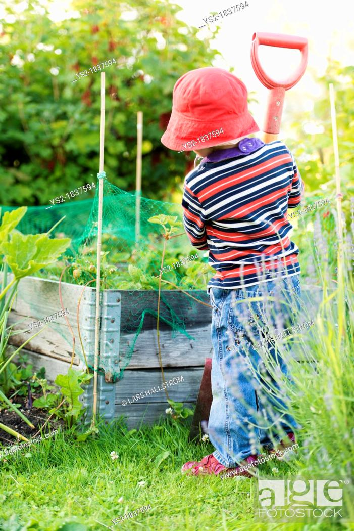 Stock Photo: Small child 3 years old playing in a garden and exploring the plants, Sweden.