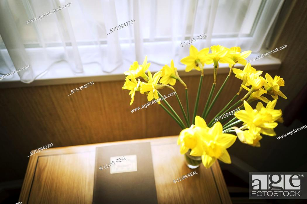 Table Beside Window With Book And Vase With Yellow Flowers Inside