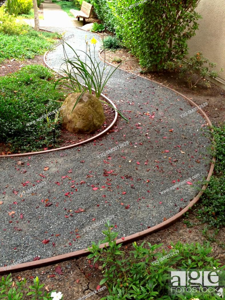 Stock Photo: Curved gravel path strewn with leaves through a garden.