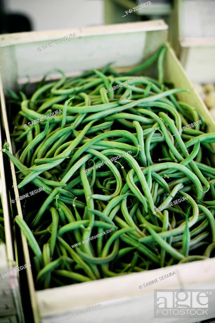 Stock Photo: French beans. Farmers market.
