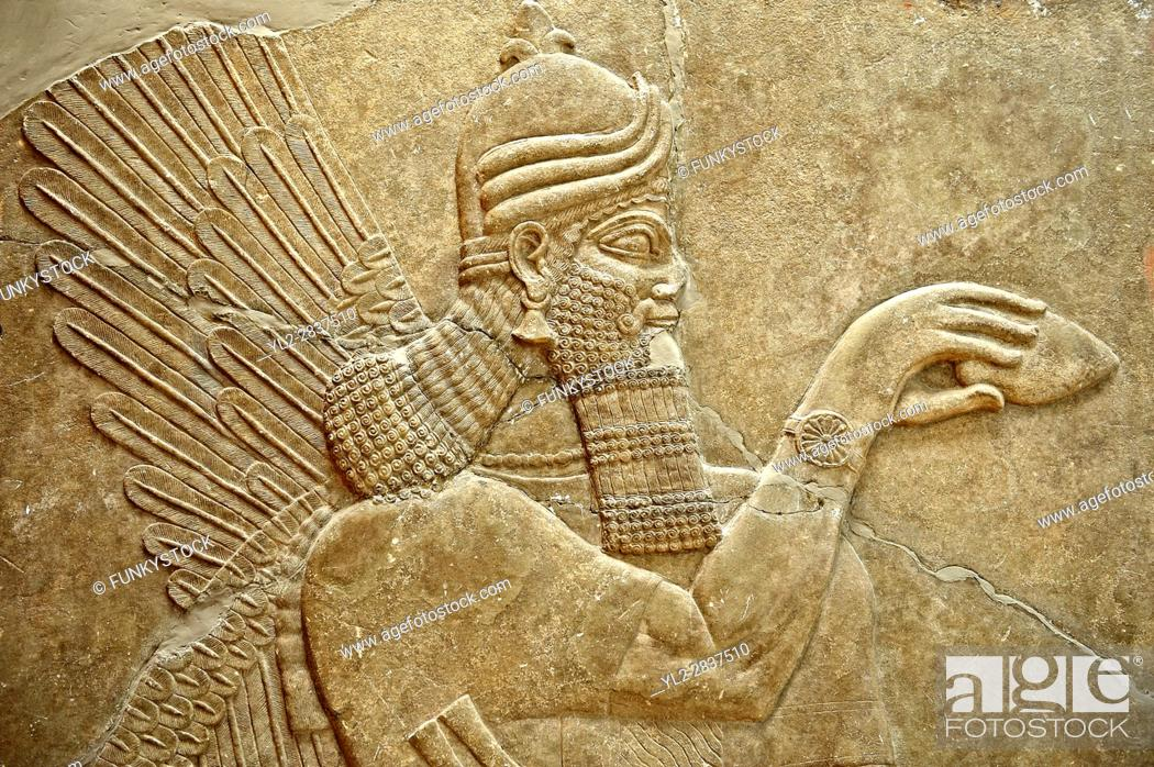 Stock Photo: Chaldean Assyrian relief sculpture slab from the northwest palace of King Ashurnasirpal II of a Genie standing. 881-859 B.