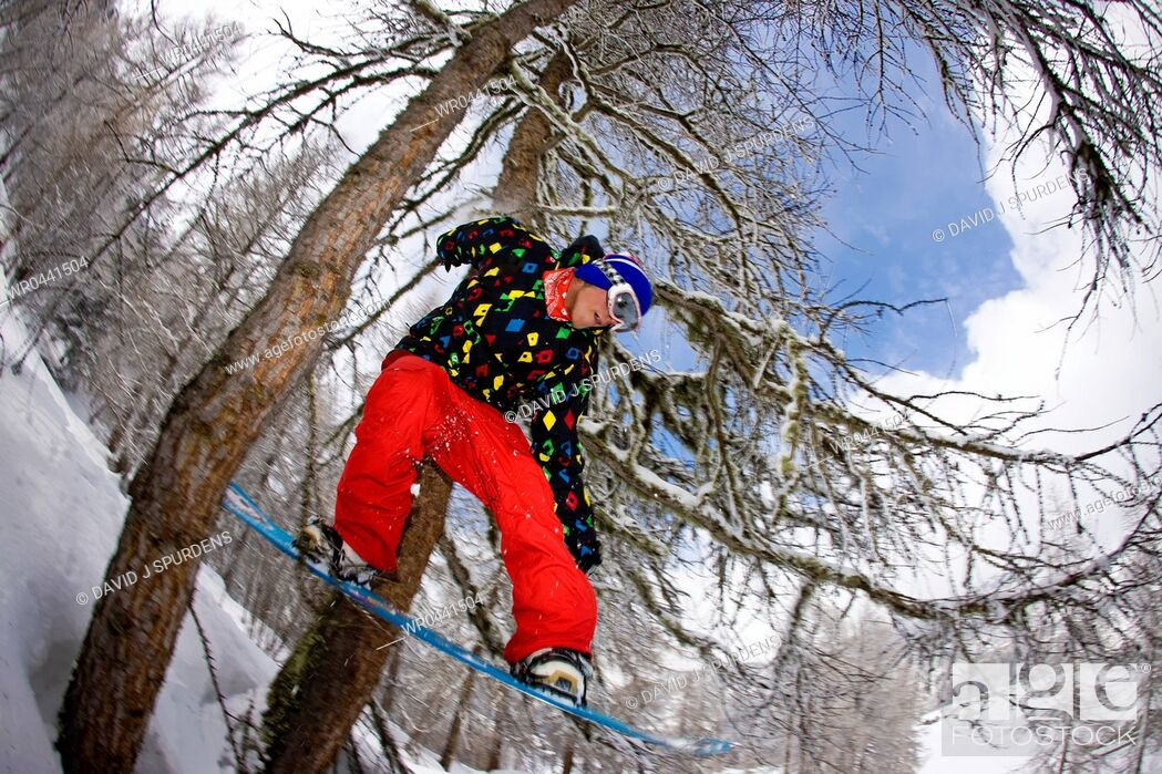 Stock Photo: A snowboarder riding through a snowy forest jumps through two trees.