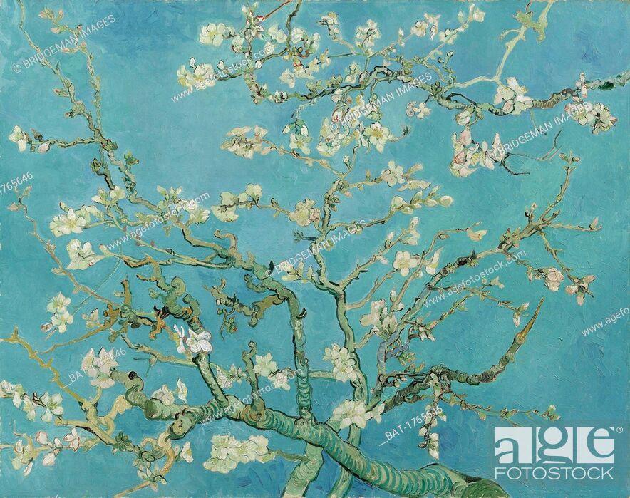 Stock Photo: Almond Blossom, 1890 (oil on canvas), Gogh, Vincent van (1853-90) / Van Gogh Museum, Amsterdam, The Netherlands / Bridgeman Images.