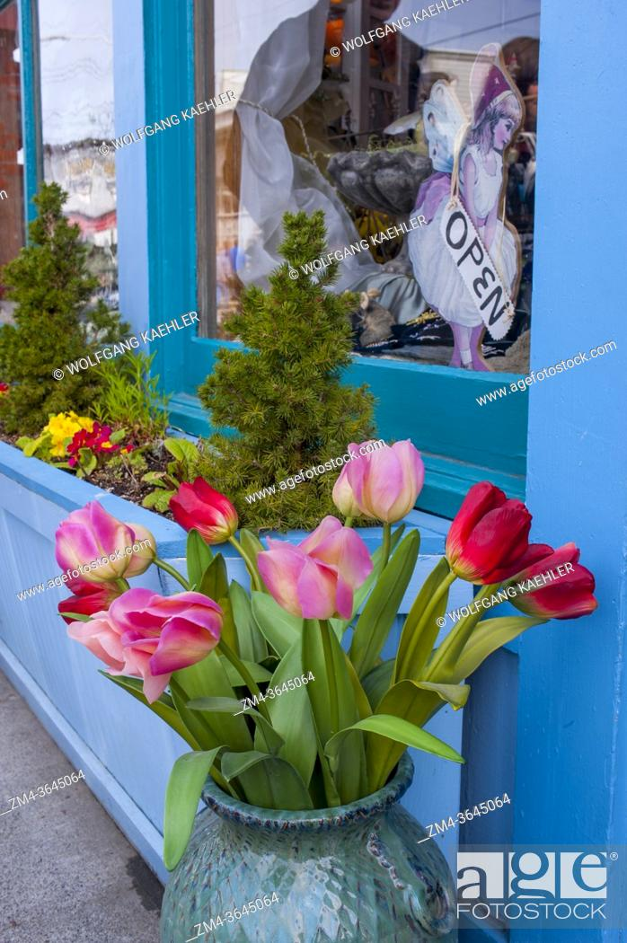 Stock Photo: A tulip bouquet in front of a shop in the historic town of La Conner in Washington State, United States.