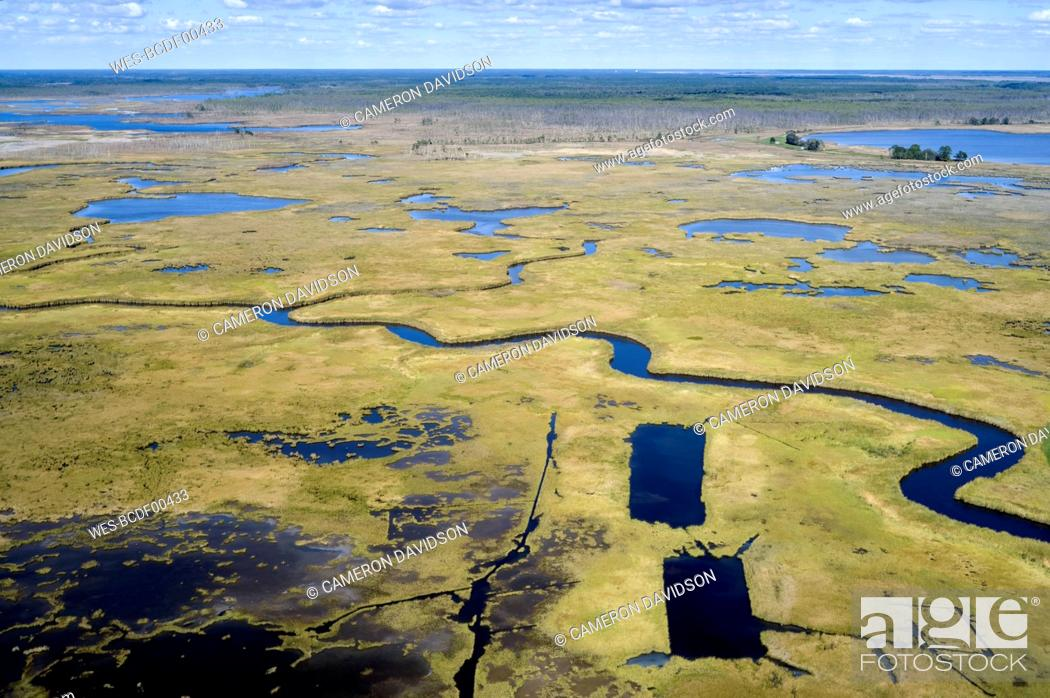 Stock Photo: USA, Maryland, Drone view of marshes along Nanticoke River on Eastern Shore.