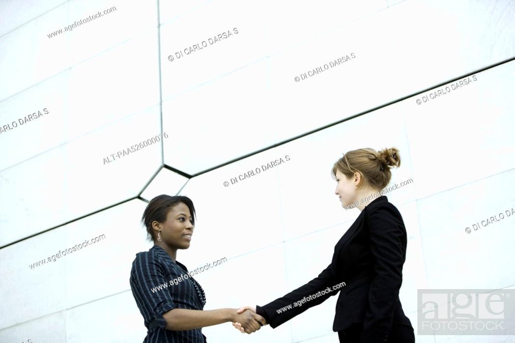 Stock Photo: Businesswomen meeting and shaking hands.