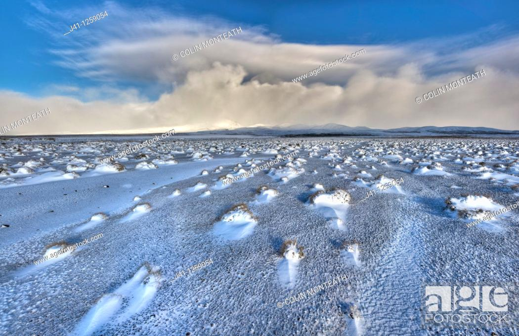 Stock Photo: Rangipo desert dawn panorama after snow storm, cloud-covered Mt Ruapehu beyond, Tongariro National Park, New Zealaand.