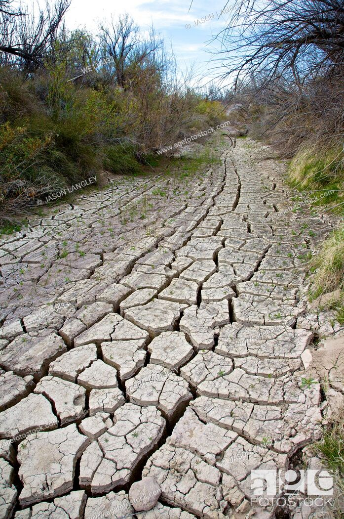Stock Photo: Dry cracked ground in a dried stream bed during a desert drought  Big Bend National Park, Texas, United States.