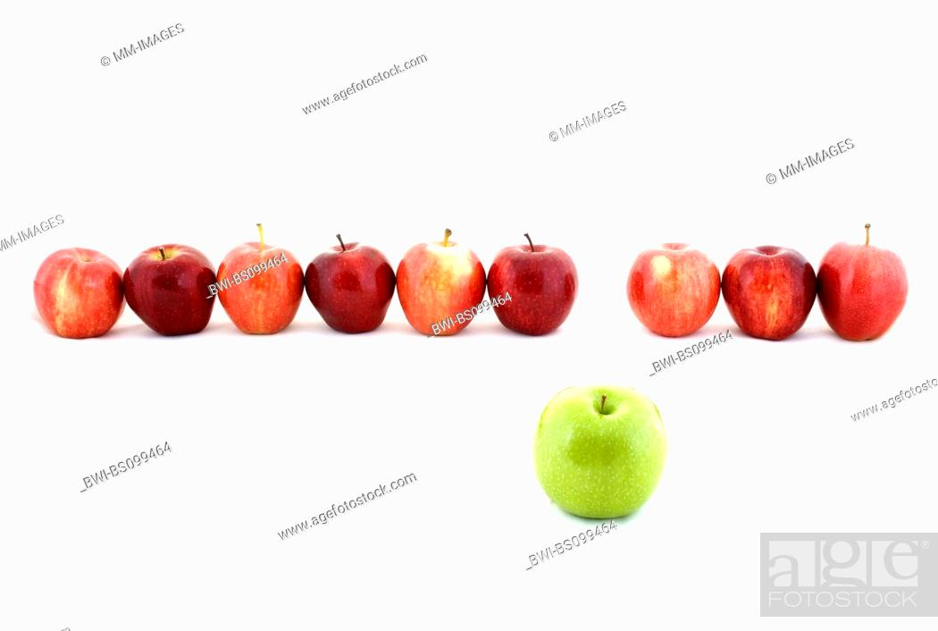Stock Photo: apple (Malus domestica), a line of red apples and one green apple.