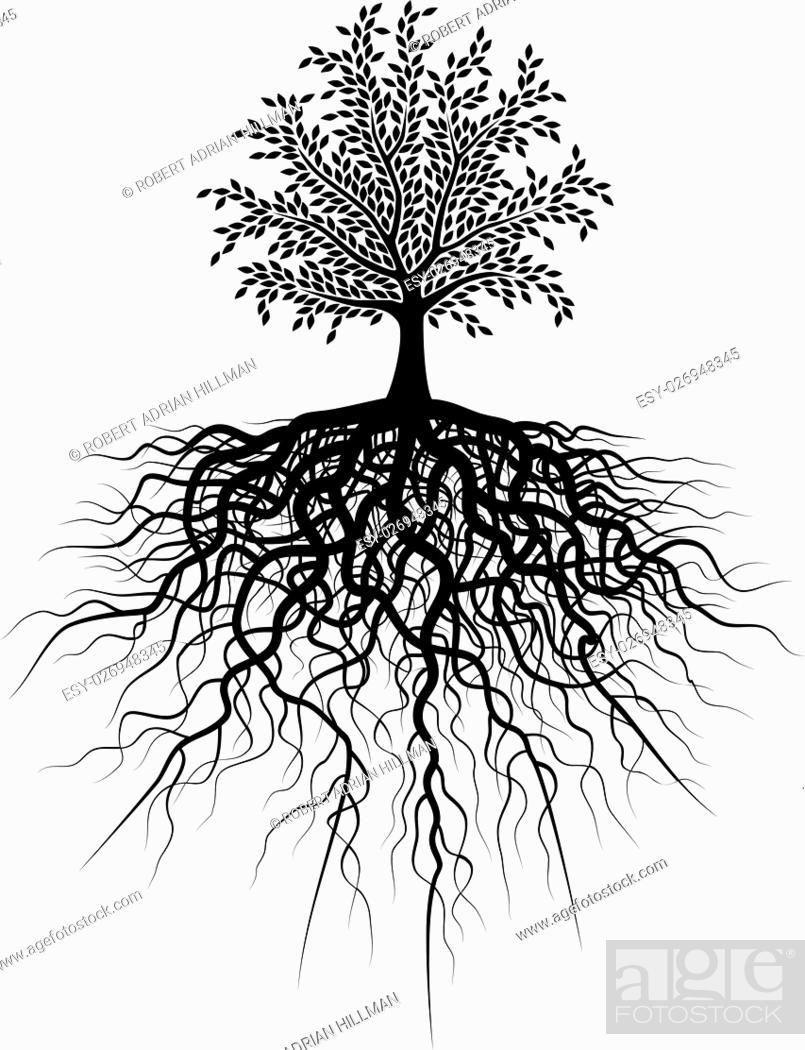 Vector: Editable vector illustration of a tree and its roots.